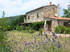 Holiday Apartment Tuscany Coast Near Pisa