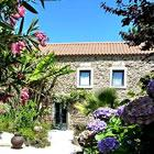 Casa do Alferes Curado Central Portugal apartment or Bed and Breakfast