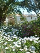 Beautiful rustic guesthouse in the paradise of the Algarve countryside.
